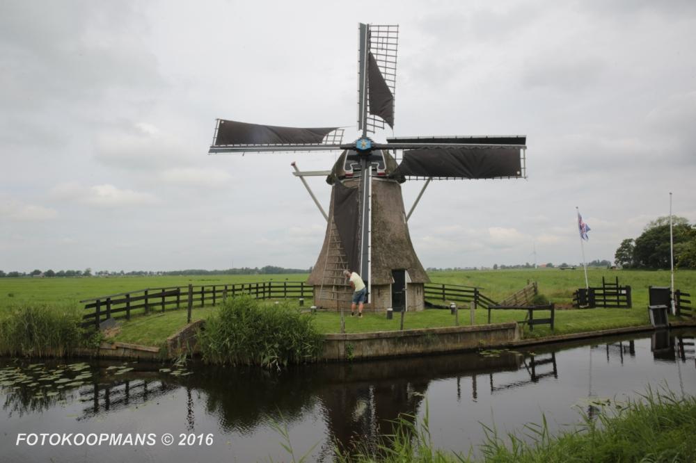 molens-mdeel-1368-25062016-fotokoopmans-2016